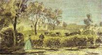 Царские резиденции в Ницце